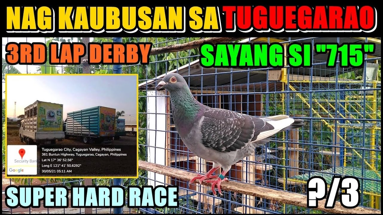 """SAYANG NA SAYANG SI """"715"""" 3RD LAP DERBY TUGUEGARAO CAGAYAN SUPER HARD RACE"""