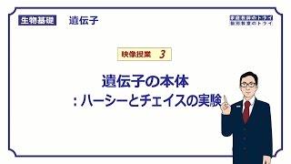 【生物基礎】 遺伝子3 ハーシーとチェイスの実験 (15分)