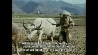 Man at War : Story of Soviet Military Advisor in Vietnam - Voennoe Delo