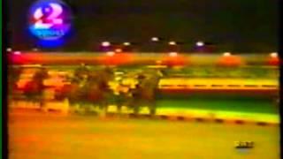 Download Video TROTTO INTERNATIONAL TROT 1987 CORAGGIOSA GARA DI ESOTICO PRAD MP3 3GP MP4