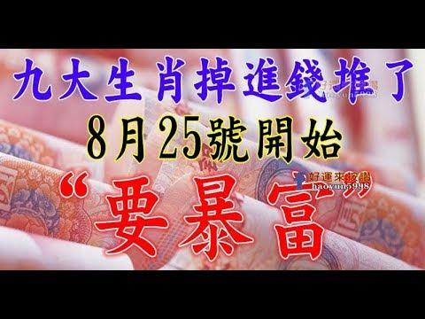 8月25號開始,九大生肖掉進錢堆,要暴富 - 十二生肖