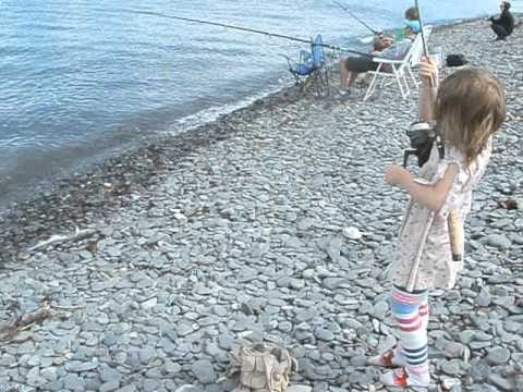 KIDS! Shore Fishing the Homer Spit AK NO GUIDE NEEDED Cod Flounder Irish Lord Salmon