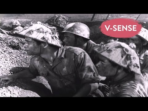 Vietnam vs France War 1965 | The Perfect Flag | English Subtitles