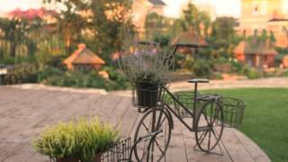 видео Зеленая стрела ландшафтный дизайн
