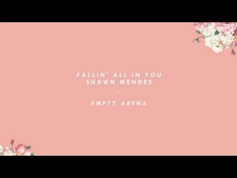 fallin' all in you — shawn mendes (empty arena) + LYRICS
