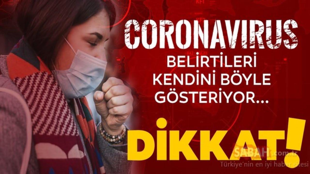Koronavirüs Nasıl Bulaşır? Belirtileri Nedir? Prof. Dr. İlhami Çelik Cevaplıyor / A Haber