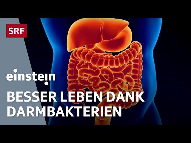 Mikrobiom – wie die Bakterien im Darm über unsere Gesundheit entscheiden   Ernährung   SRF Einstein