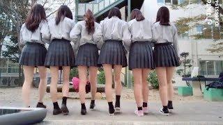 [Tik Tok Japan] 日本のティックトック学校 | Tik Tok High School In Japan