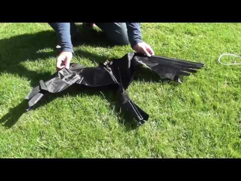 Storslåede Duehøg - Fugleskræmmer - YouTube SL64