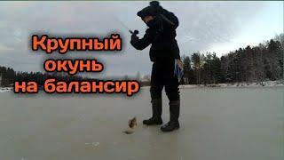 Крупный окунь на балансир по первому льду Зимняя рыбалка в Ярославской области 2020