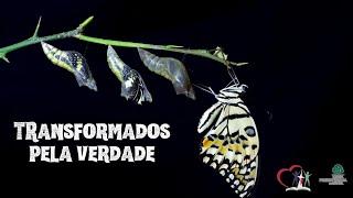 TRANSFORMADOS PELA VERDADE