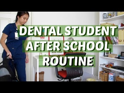 Dental Student After School Routine || Brittany Goes to Dental School