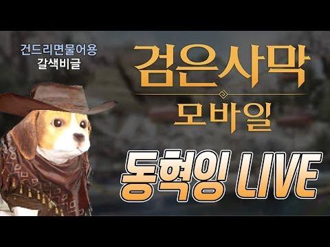 검은사막M : 숙제합시다~ 월드경영~~ 영광의길~ 그저 무한파밍 소통방송 게임라디오 유튭 동혁잉