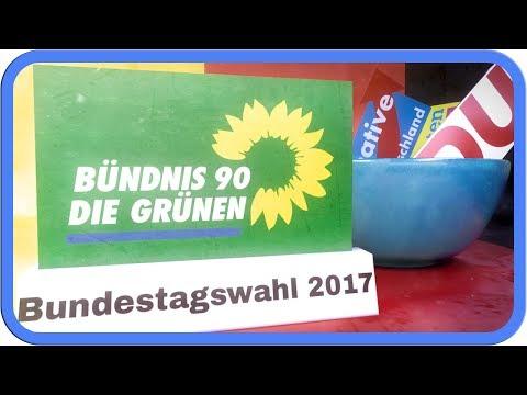 Die Grünen erklärt | Bundestagswahl 2017