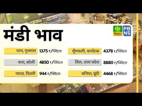 मंडी खबर, 25 अप्रैल - धनिया, प्याज़, धान, चना, तिल आदि का ताजा भाव | MANDI KHABAR | 25 April 2020