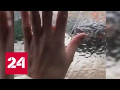 В Тамбовской области несколько дней идет ледяной дождь - Россия 24