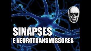 Vídeo Aula 086 - Sistema Nervoso - Animação: Neurônios, sinapse, contração muscular e movimento