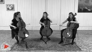 Ständchen - Der Erlkönig - Wenn ich ein Vöglein wär' (for CELLO TRIO  by she plays cello)