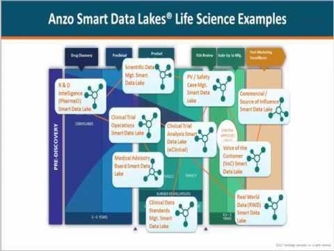 Cambridge Semantics Leveraging Real World Data Webinar Preview