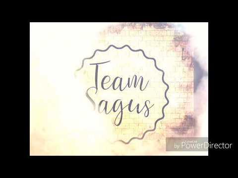 Remeras Team Sagus