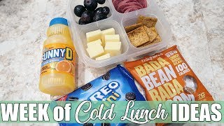 On the Go Cold Lunch Ideas for Work or School | feat. Variety Fun Box