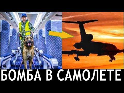 ВАЖНО!!! Пассажир рейса Ереван-Москва сообщил о бомбе на борту самолета