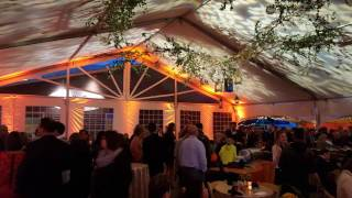 Tent wedding with spring tree gobos by Duluth Event Lighting