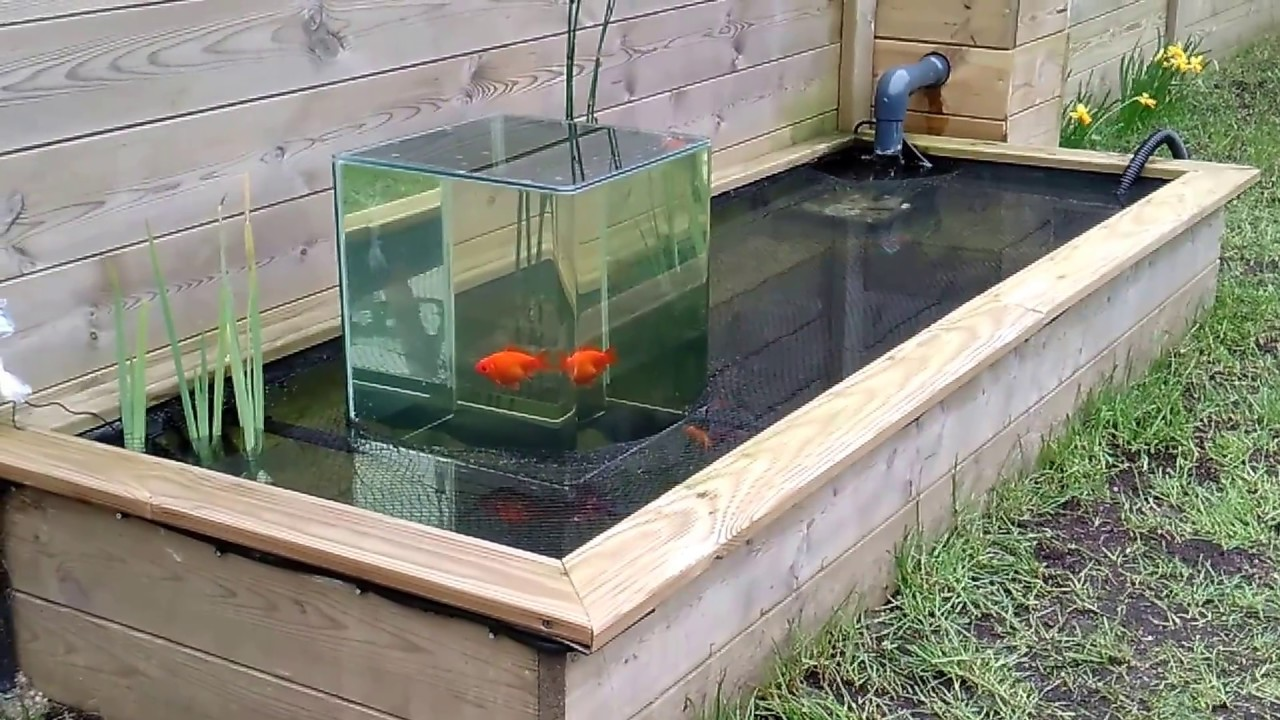 Aquarium invers sur bassin 700l youtube for Creer bassin poisson
