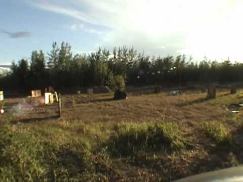 paintball training camp round 7 hay river reserve nt