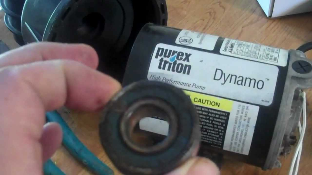 small resolution of how to change pentair dynamo pump bearings seal