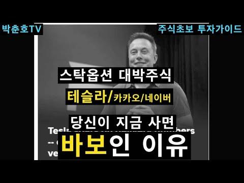 스탁옵션 대박주(테슬라/카카오/네이버), 지금사면 바보인 이유