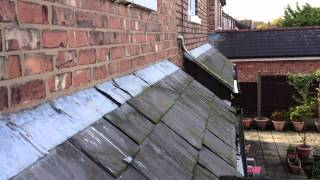 Dryabode - Damp And Roof Survey