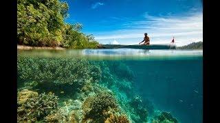 L?archipel qui bannit la crème solaire pour sauver son corail