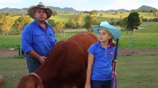 Living in the Gympie region