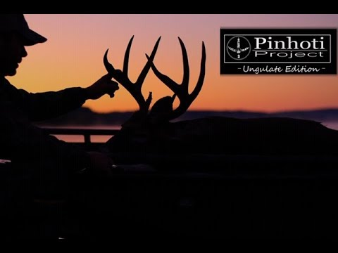 PUBLIC LAND KENTUCKY DEER HUNTING_ BOW BUCKS BY BOAT- Pinhoti's Ungulate Edition