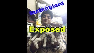 Saurabh Dog kennel exposed.. In Varanasi -Beadoglover