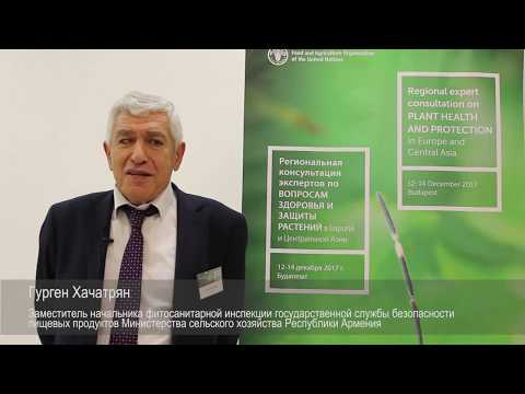 Interview with Gurgen Khachatryan -- Regional expert consultation on plant health and protection