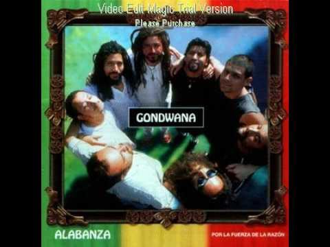 te recuerdo amanda gondwana