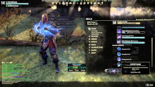 Eso V14 Sorcerer Build Update King Richard 1.6