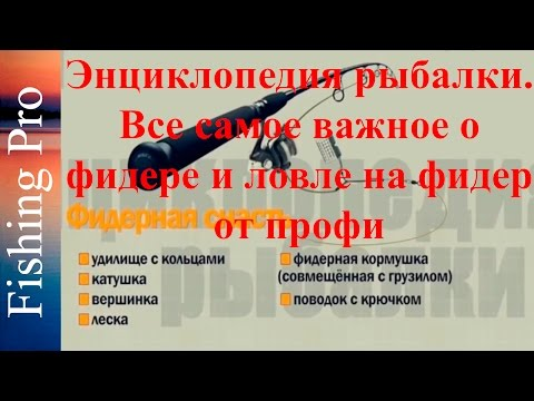 Энциклопедия рыбалки. Все самое важное о фидере и ловле на фидер от профи