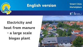 Electricity and heat from manure - a large scale biogas plant. Example Maabjerg, Denmark