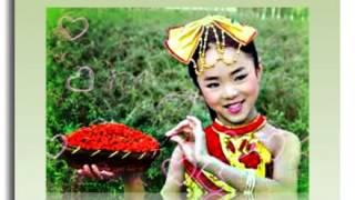Китайские ягоды годжи. Тибетские  ягоды годжи - целительные ягоды.