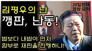 김평우 깽판 영상, 이정미 재판관을 향한 삿대질과 고성 - 20일 헌재