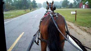 a trip to town in  an amish buggy 001