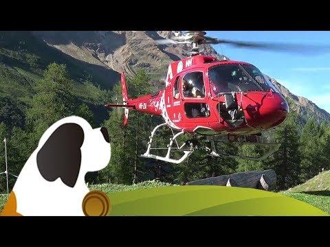 Air Zermatt Material