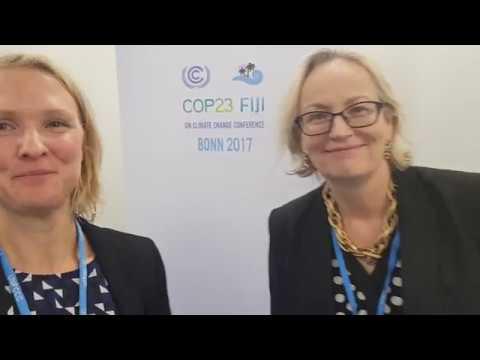 Julie Girling COP23 om EU:s utsläppshandelssystem, EU ETS