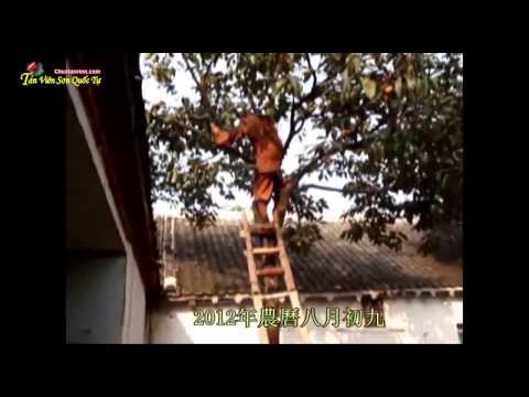 Lão Hòa Thương Hải Hiền 112 tuổi Tự Tại Vãng Sanh (HD Rất Hay)