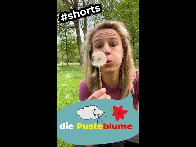 Wie heißt diese Pflanze auf Deutsch? #shorts
