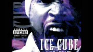 Ice Cube - 100 Dollar Bill Y