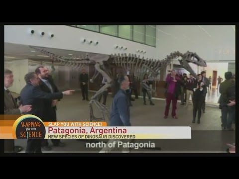 Slap You with Science: New Dinosaur in Argentina